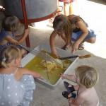Les enfants du village pour la première récolte de miel chez les Dubois