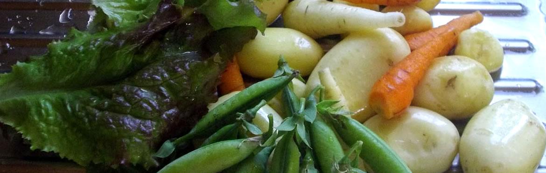 légumes jardinière bio en haute-loire