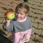 Récolte de pommes avec les enfants
