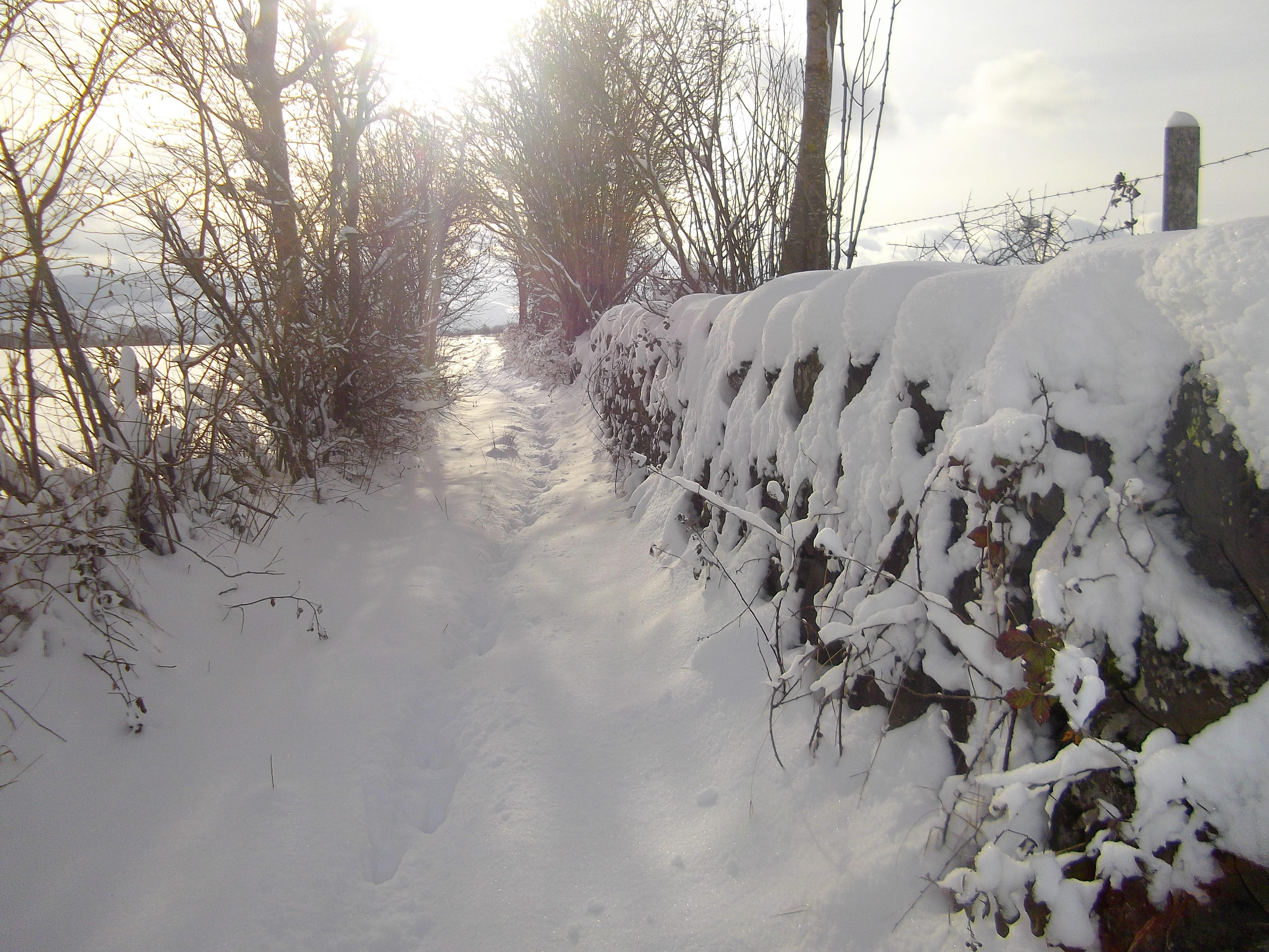 chemin enneigé à Vailhac